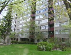 60 McLeod Street